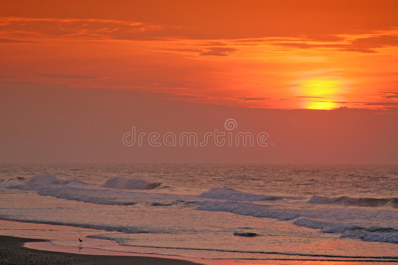 Download Early morning on the beach stock image. Image of beautiful - 2852043