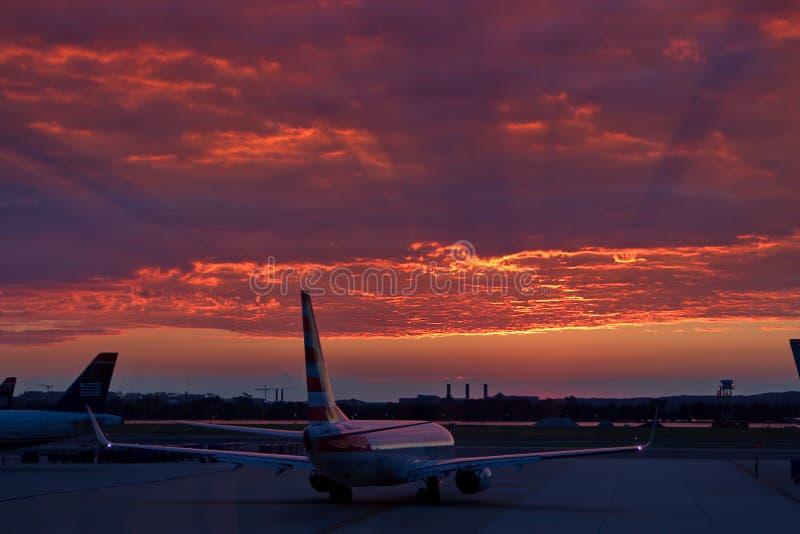 Early Morning Flight stock photos