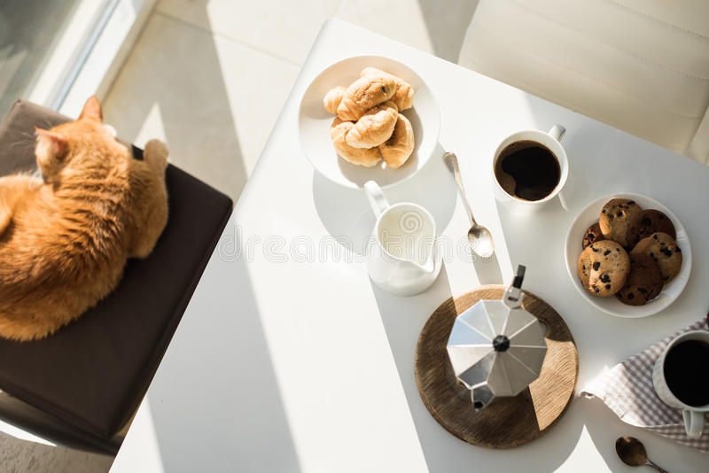 Early morning french home breakfast with coffee. Early morning french home breakfast, coffee and cookies on the table near window in bright sunlight, white stock photo
