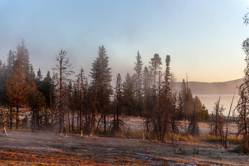 Sunrise the the West Thumb Aera of Yellowstone National Park. Early morning impression of the West Thumb Area in Yellowstone National Park royalty free stock photo
