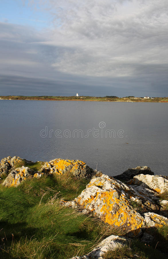 Download Early Morning Landscape, Four Mile Bridge, Anglesey Stock Photo - Image: 61799003