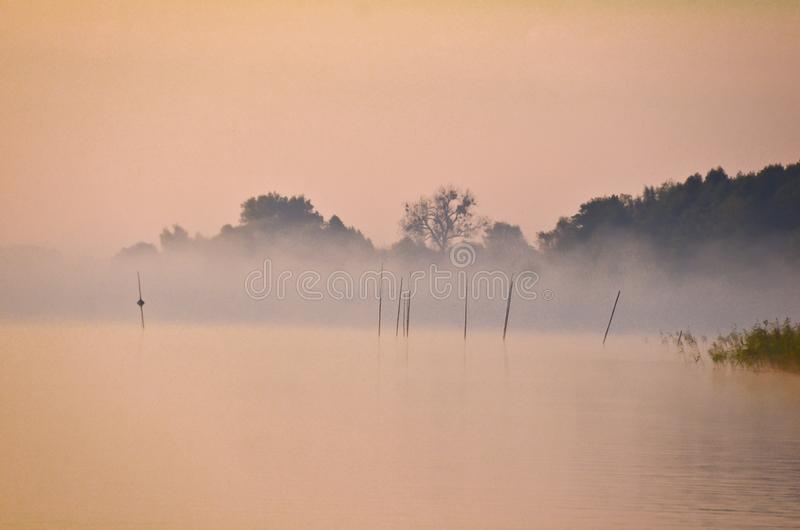 Early morning light with pastel dust in pink at the shore of a lake royalty free stock images