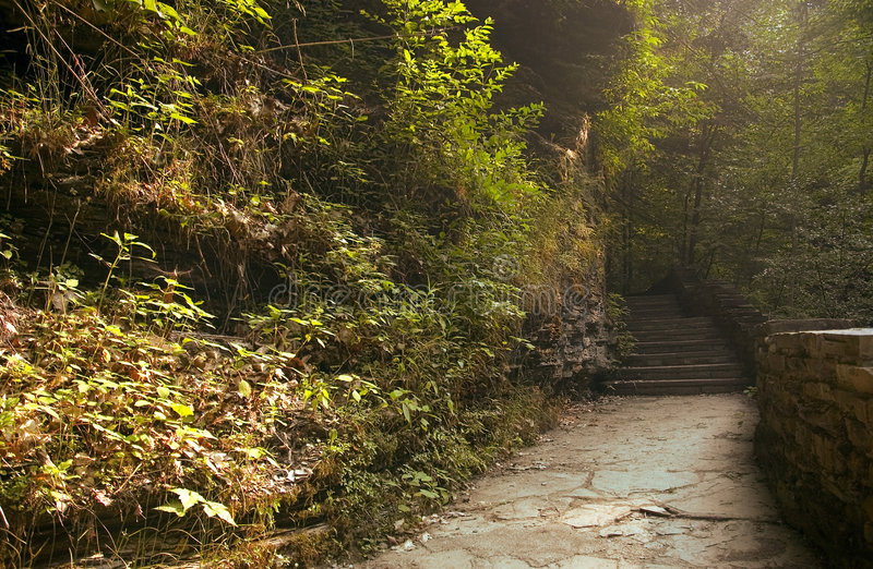 Early Morning Light On The Trail royalty free stock photo