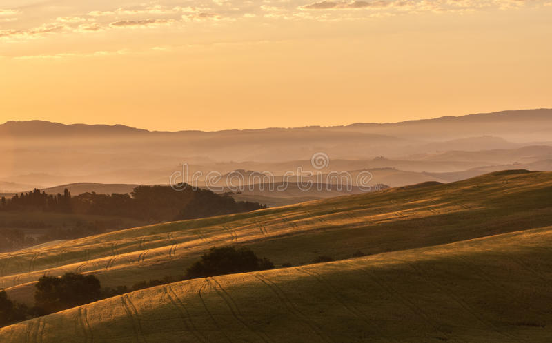 Download Early Morning Light  In The Tuscany Stock Photo - Image: 26606520