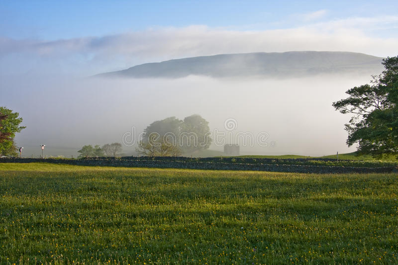 Download Early morning mist stock image. Image of yorkshire, dales - 25084205