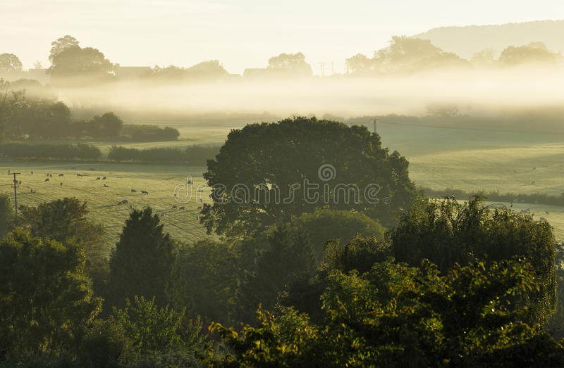 Download Early Morning Mist stock photo. Image of fall, landscape - 33498486