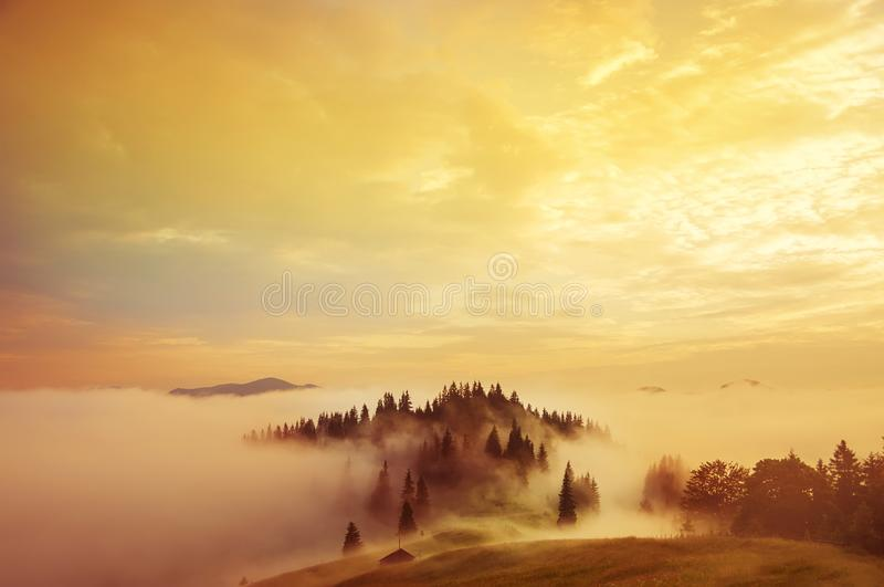 Early morning in the mountains. royalty free stock photography