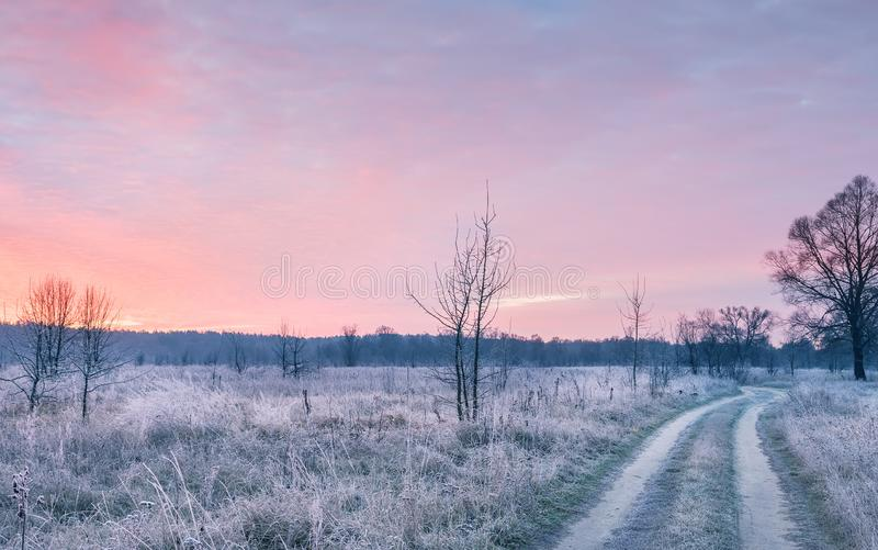 Early morning on the nature in the fall. white hoarfrost covers all the grass and the colorful dawn sky. royalty free stock photo
