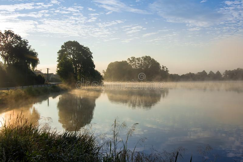 Early summer morning at the pond stock photos