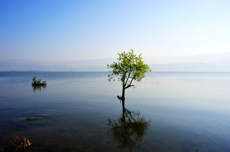 Download Early morning's lake stock photo. Image of sunlight, china - 14149480
