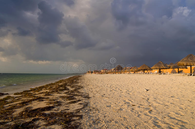 Stormy Morning on Cancun Beach stock images