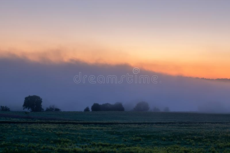 Early morning sunrise landscape with bushes in fog near river at summer royalty free stock image