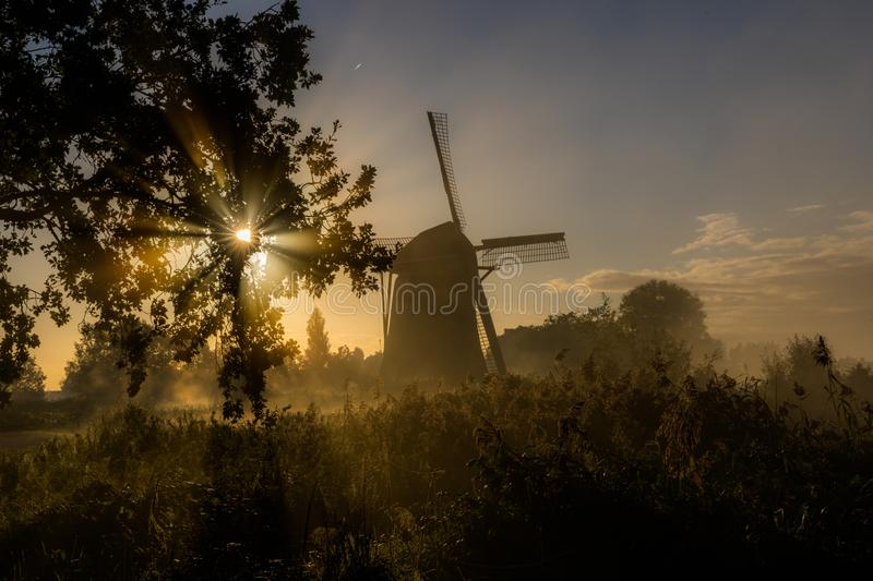 Early morning before sunrise in the polder stock photo