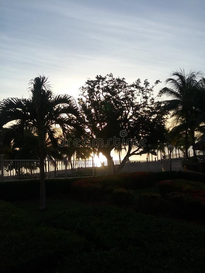 Rising sun stock images