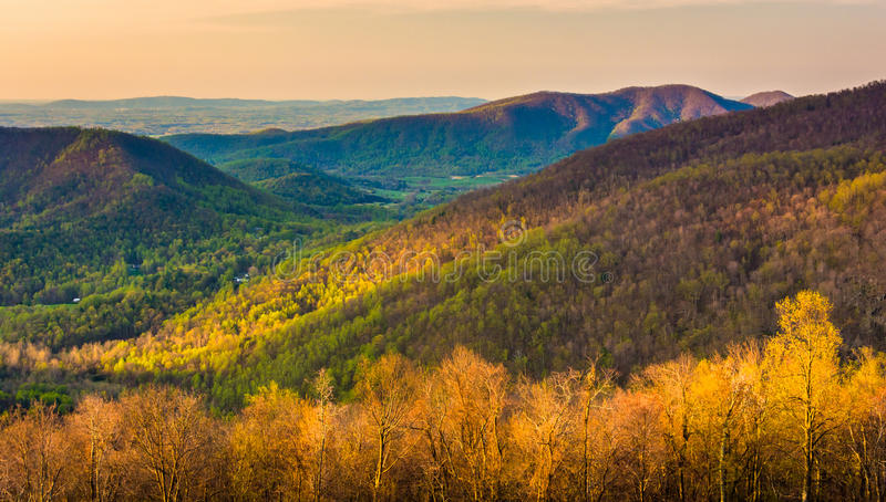 Early morning view of the Appalachian Mountains from Skyline Drive in Shenandoah National Park, Virginia. stock image