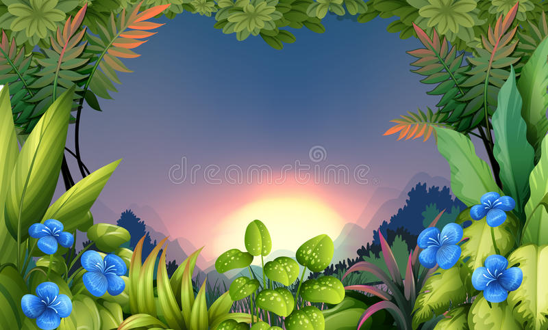 An early morning view at the forest. Illustration of an early morning view at the forest stock illustration