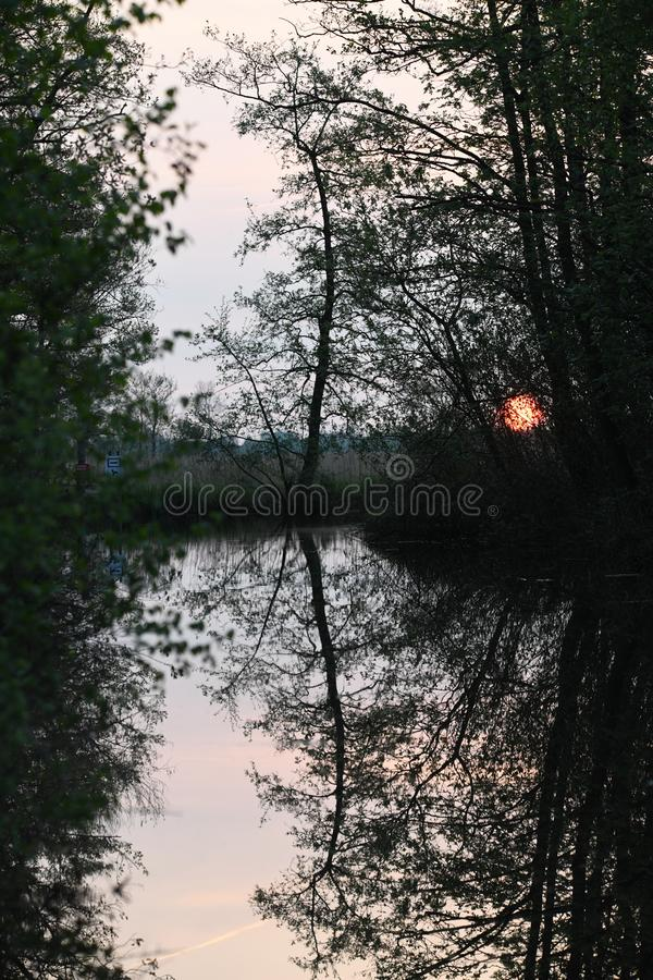 Beautiful mirror in the water on a early morning. On a early morning we where on our way on a boat when the sun was coming up and a beautiful mirror in the water stock photography