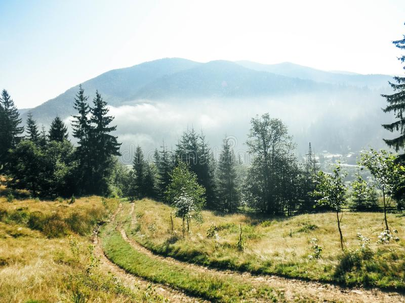 Early morning in the wood near road with fog and mountains stock photo