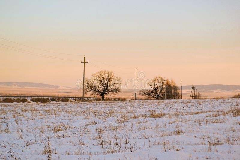 Early spring, bare trees, snowy fields of nature, horizon royalty free stock photo