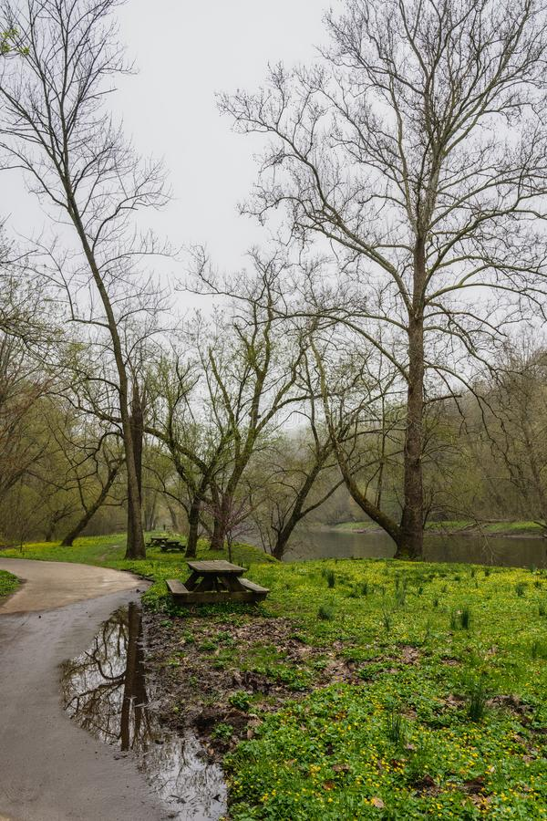 Early spring at Brandywine Creek State Park. In light rain showing the creek, leaves just budding on the trees, picnic tables and reflections in a puddle stock photos