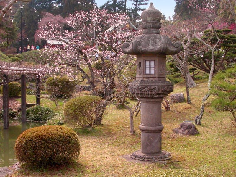 Early spring Japanese garden stock photo