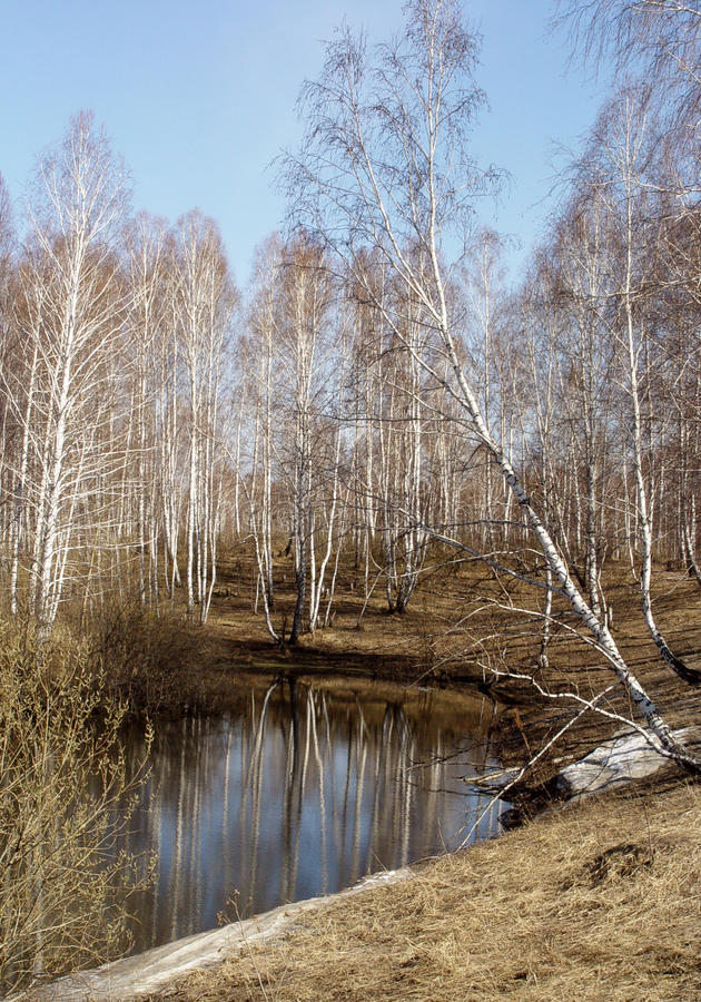 Early spring, lake, blue sky royalty free stock photography