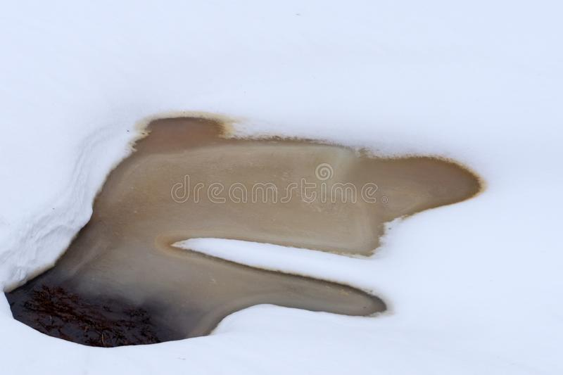 Early spring landscape of the snow in the forest. Melt water in a spring stream on a sunny day in the forest . stock image