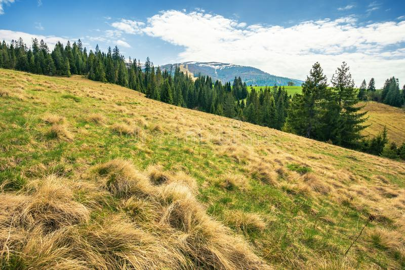 Early springtime countryside in mountains royalty free stock photo