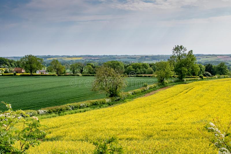 Early summer view of rolling English countryside. Early summer view across the rolling English countryside of the Lincolnshire Wolds stock photo
