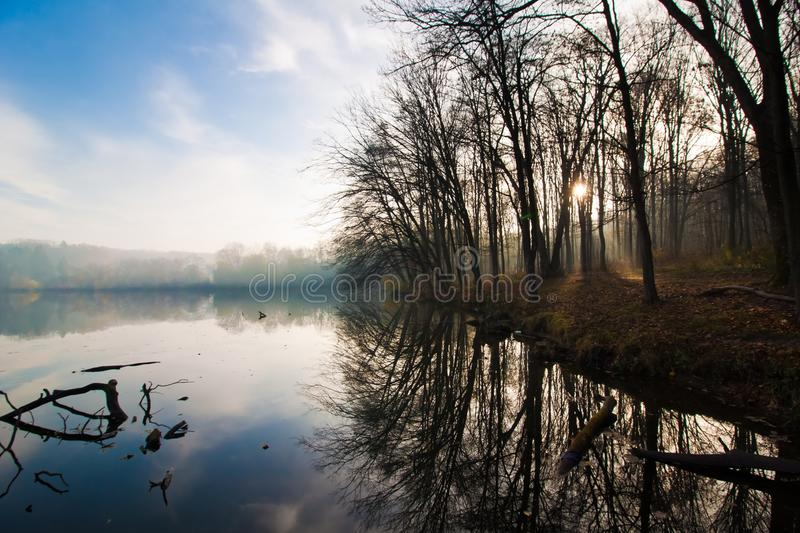 Early sun rays shine through bare tree branches on forest path, reflections on still water surface, beautiful early, misty dawn royalty free stock photo
