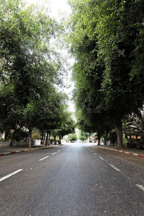 Download Empty Tel-Aviv Street Stock Image - Image: 29910991