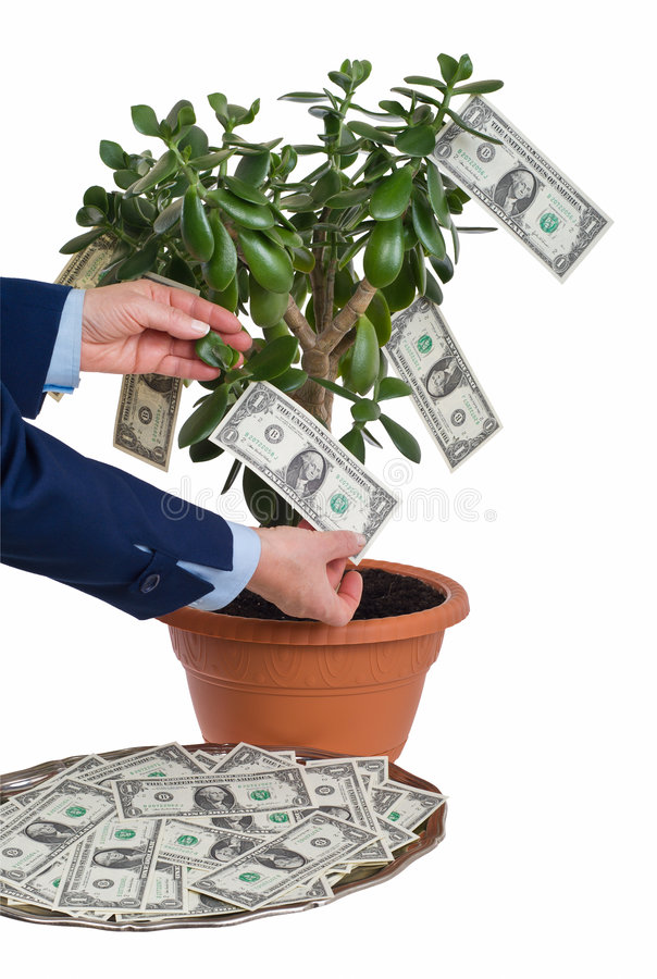 Download Earning profit stock photo. Image of photo, grow, heap - 3656696