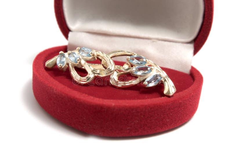 Earrings In Jewelry Box Stock Photo