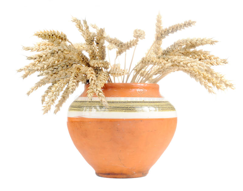 Ears Of Wheat In Clay Pot Royalty Free Stock Image