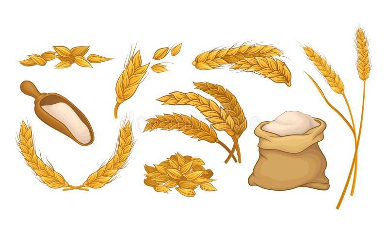 Ears Of Wheat. Grain Culture Vector Illustration stock illustration