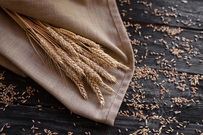 Ears of wheat are lying on the bag, new crop in agriculture stock image