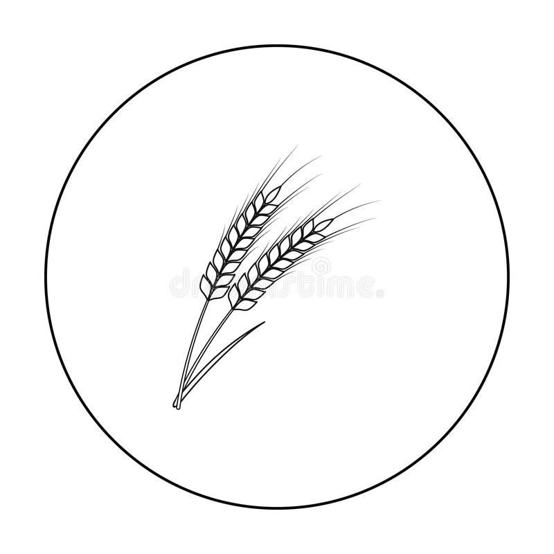 Ears of wheat pasta icon in outline style isolated on white background. Types of pasta symbol stock vector illustration. royalty free illustration