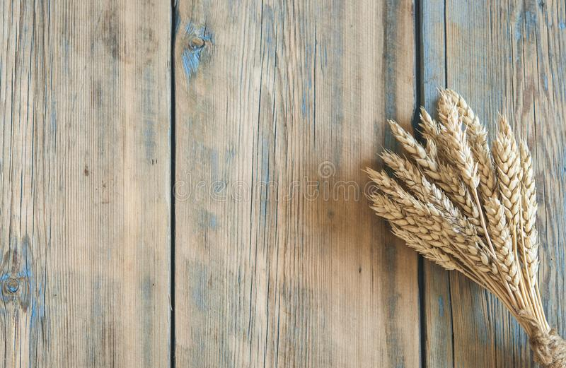 ears of wheat on wooden background stock image