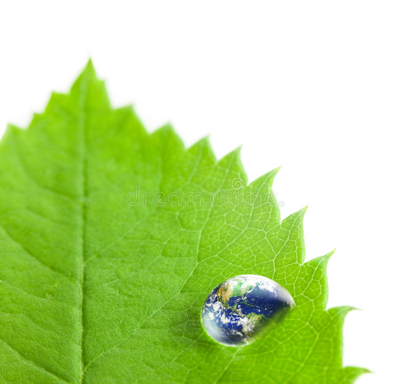 Earth into Big Water Drop on a Green Leaf / white background. Earth Big Water Drop on a Green Leaf / white background / Eco concept / Super Macro shot Earth stock photo