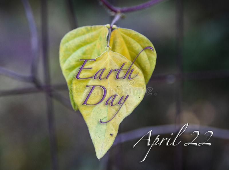 Earth Day April 22 illustration with leaves and blurred background royalty free stock photo