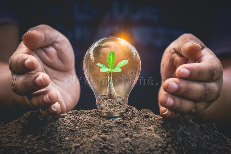 Earth day concept or protection environment. Renewable energy for sustainable. Hands protecting plant growing on soil. stock photography