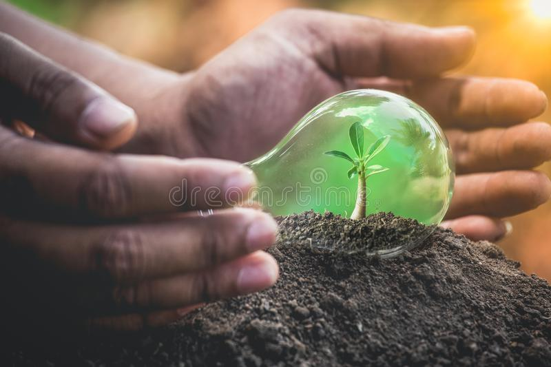 Earth day concept or protection environment royalty free stock images