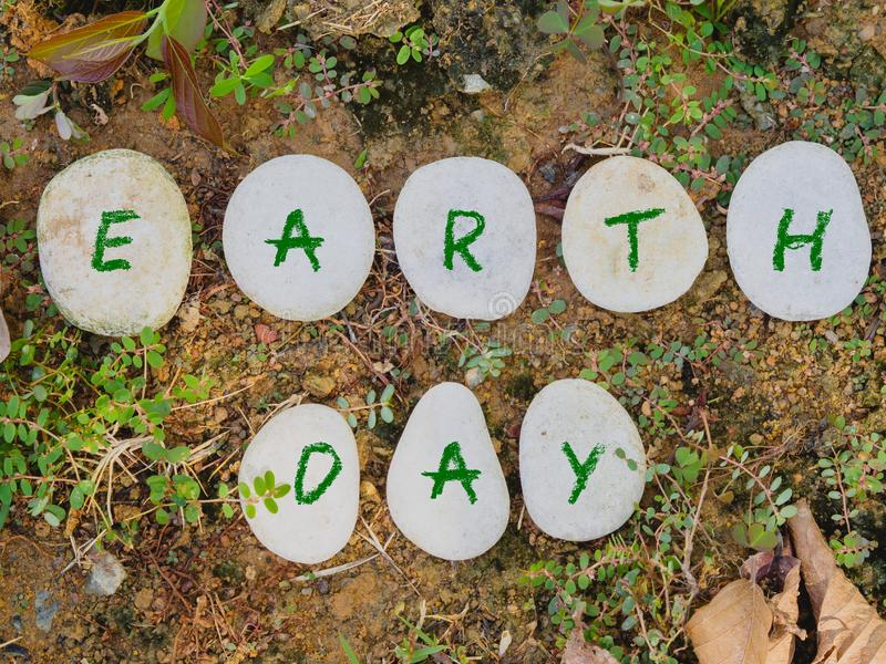 Stone with green text on green gress background. Earth day concept. stone with green text on green gress background royalty free stock photo