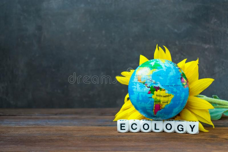 The Earth globe ball against yellow sunflower and the word ecolo stock photos