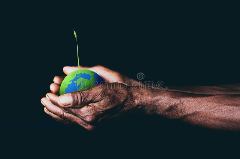 Earth in hands. plant in hand. save the world stock image
