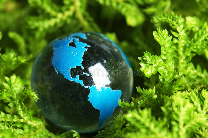 Download Earth marble in plant stock image. Image of ball, field - 15088235