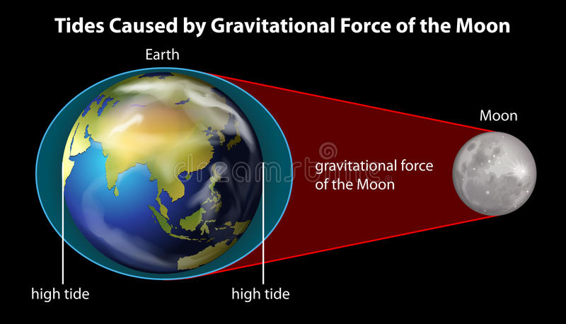 Earth and Moon. Poster explaining cause of tides by gravitational force stock illustration