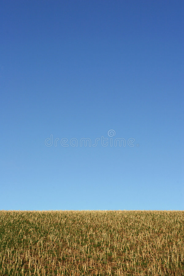 Earth and Sky royalty free stock photo