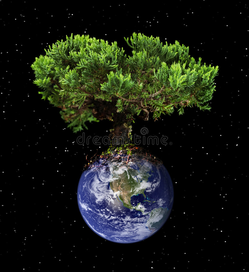 Earth tree vector illustration
