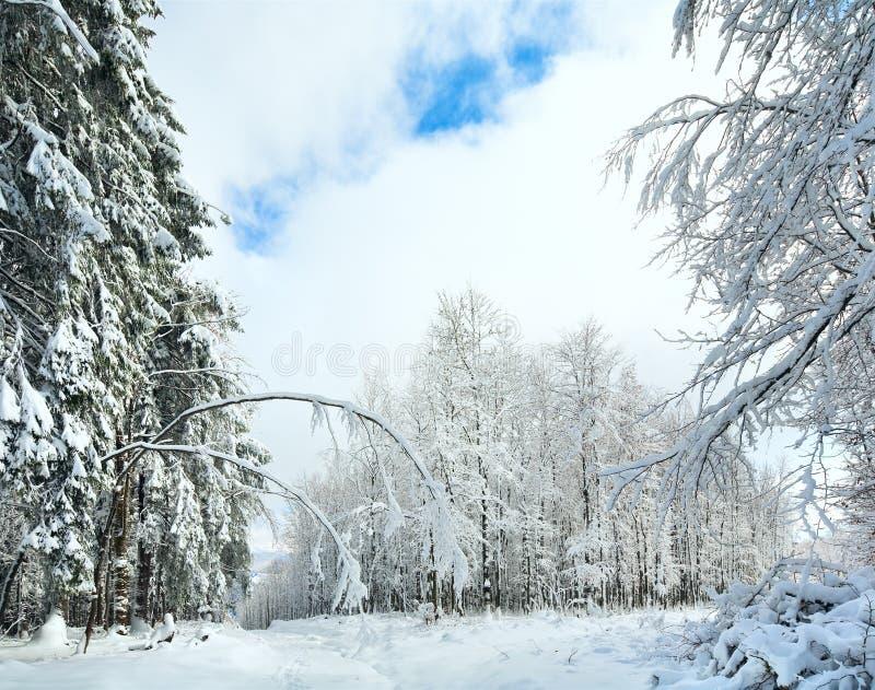 Earthroad Snowbound di inverno fotografie stock